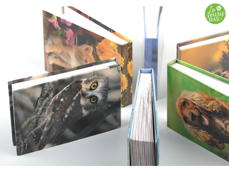 Memo Books Animaux