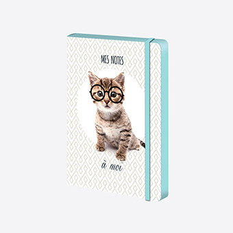 Box La Mini Box - Carnet A5 Intello Kitty